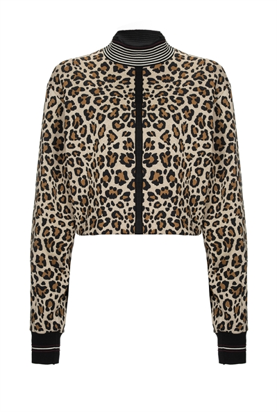 pinko-italian-brand-sweatshirt-leopard-belgian-fashionista-french-brand-into-the-wild-animal-print-trend-autumn-winter-automne-hiver-2016-2017-aw1617-tendance-tendances-trends