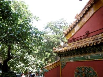 china-chine-forbidden-city-cite-interdite-pekin-beijing-travel-blogger-16