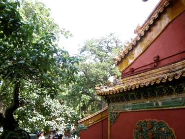 china-chine-forbidden-city-cite-interdite-pekin-beijing-travel-blogger-16