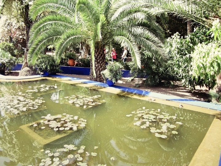 Marrakech-Photo-Diary-Journal-Belgian-Fashion-Travel-Blogger-Yves-Saint-Laurent-Maroc-Morocco-Jardin-Majorelle-Garden-etang.jpg