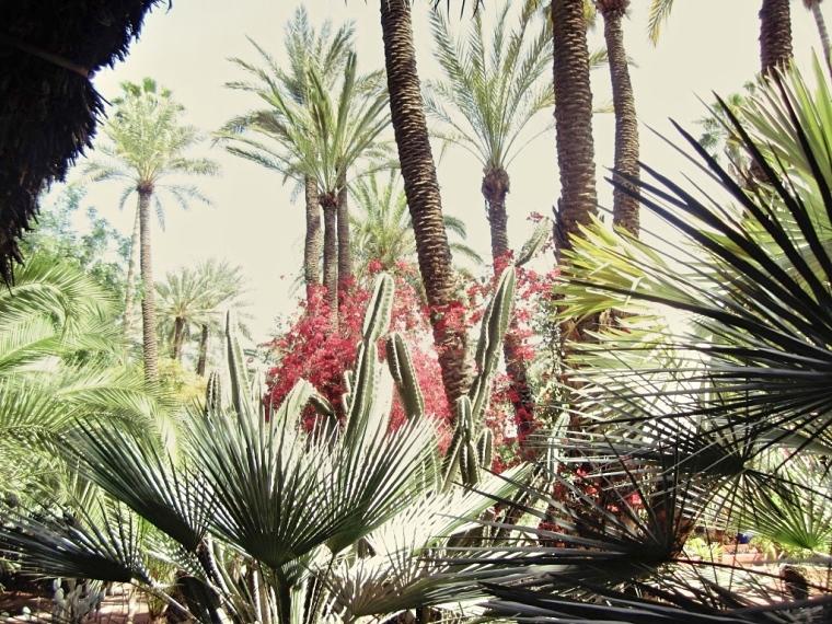 Marrakech-Photo-Diary-Journal-Belgian-Fashion-Travel-Blogger-Yves-Saint-Laurent-Maroc-Morocco-Jardin-Majorelle-Garden-palmier-palm-street-red.jpg