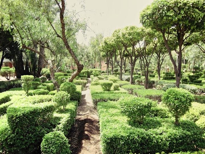 Marrakech-Photo-Diary-Journal-Belgian-Fashion-Travel-Blogger-Yves-Saint-Laurent-Maroc-Morocco-Jardin-Majorelle-Garden-parc.jpg