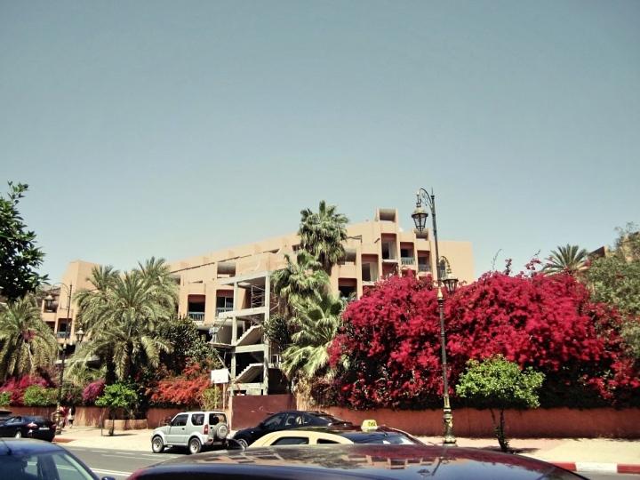 Marrakech-Photo-Diary-Journal-Belgian-Fashion-Travel-Blogger-Yves-Saint-Laurent-Maroc-Morocco-Jardin-Majorelle-Garden-ville-rouge-red-city.jpg