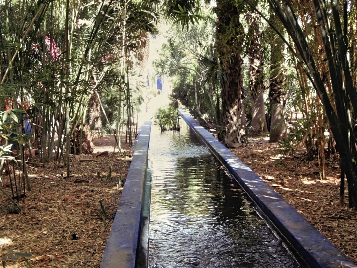 Marrakech-Photo-Diary-Journal-Belgian-Fashion-Travel-Blogger-Yves-Saint-Laurent-Maroc-Morocco-Jardin-Majorelle-Garden-water.jpg